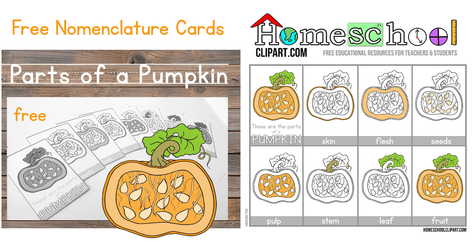 worksheet Parts Of A Pumpkin Worksheet parts of a pumpkin montessori cards pumpkincardsheader