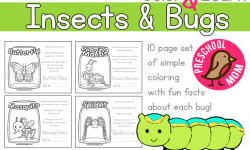 Color and Learn Worksheets