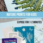 Making Art with Nature Prints