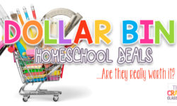 Dollar Bin Homeschool Deals… Are They Really Worth It?