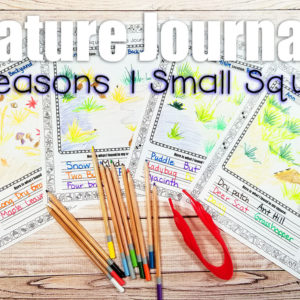 One Small Square Nature Journal